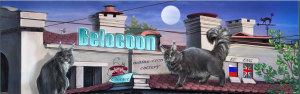 Belocoon